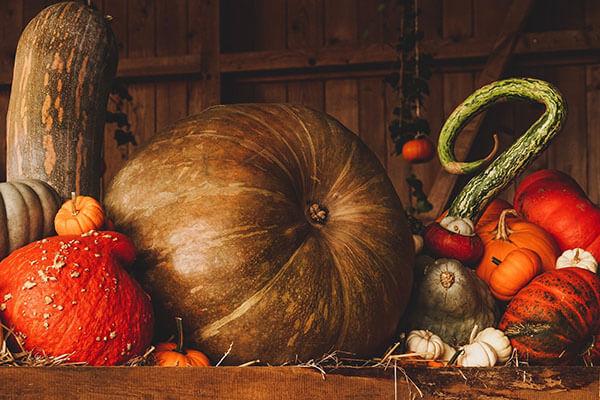Dovleci Halloween din România
